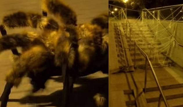 Perro-araña mutante causa terror y se convierte en viral