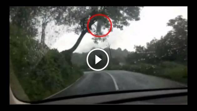 Escalofriante fantasma aparece en carretera a plena luz del día