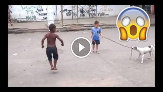 ¡Increíble! Perro juega con niños a saltar la soga