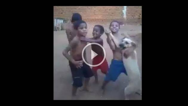 Niños bailan con su perro y video se convierte en viral