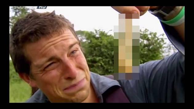 Bear Grylls: larva gigante entre lo más asqueroso que tuvo que comer [Video]