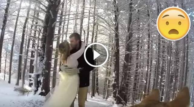 ¡Increíble! Perro graba la boda de sus amos