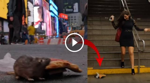 Broma de la rata que roba pizza causa pánico