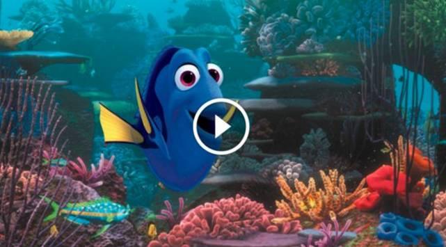 'Finding Dory': Chequea el tráiler de la continuación de 'Buscando a Nemo'