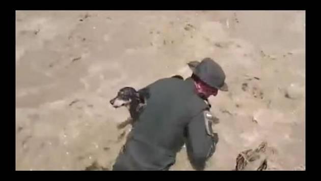 Colombia: Policía salva a perro de inundación y ¡hasta le hacen respiración boca a boca!