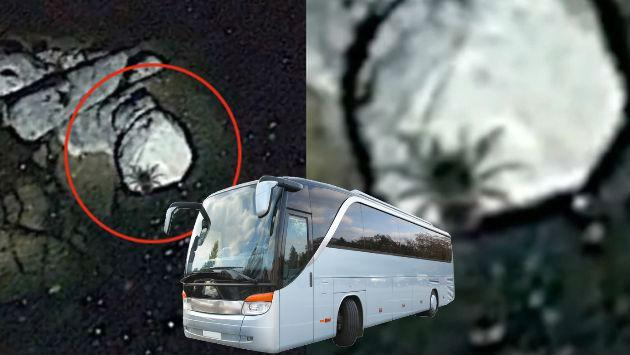 ¿Una arana del tamaño de un bus fue captada en México? Mira el video