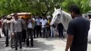 Caballo que 'llora' en el funeral de su dueño te romperá el corazón [VIDEO]