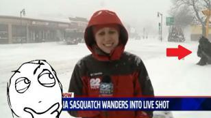 ¿Qué fue lo que apareció detrás de esta reportera durante despacho en vivo? [VIDEO]