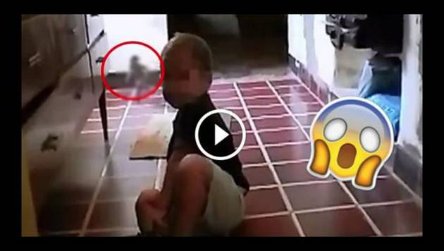 Este video probaría que los duendes sí existen
