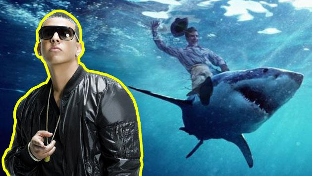 Daddy Yankee es tan 'pro' que nada con tiburones en Hawaii [VIDEO]