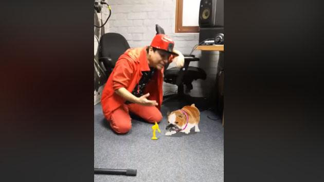 El perrito de Jojojonathan se emocionó por esta razón [VIDEO]