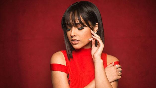 Las frases que marcaron el éxito del reggaetón en este 2017