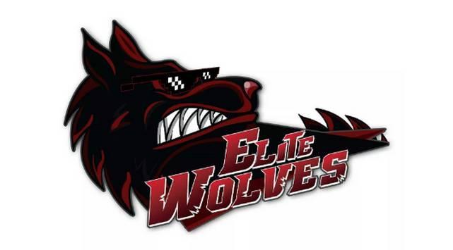 Elite Wolves regresó a Lima y esto opinó de la WePlay Dota2 League