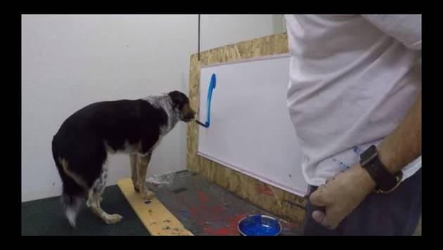 ¡Este perrito puede escribir su nombre!