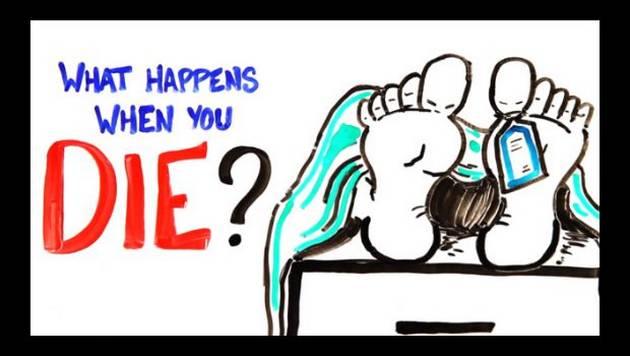 Esto es lo que te pasará al morir [VIDEO]