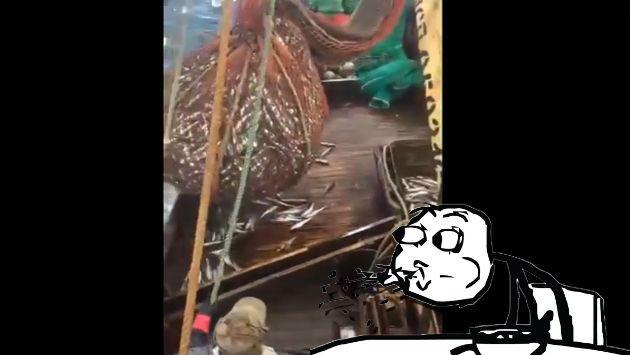 ¡Abrieron una red llena de pescados sin saber la sorpresa que les esperaba!