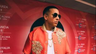 Fanático se sube al escenario y logra abrazar a Daddy Yankee