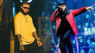 Nicky Jam y Farruko quieren grabar con sensual artista revelación