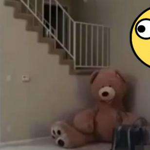 ¡Vacílate con la broma del peluche gigante! [VIDEO]