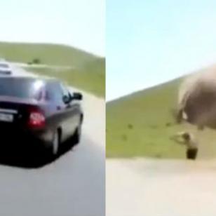 ¡Salió volando por la ventana tras volcadura de su carro en plena carretera!